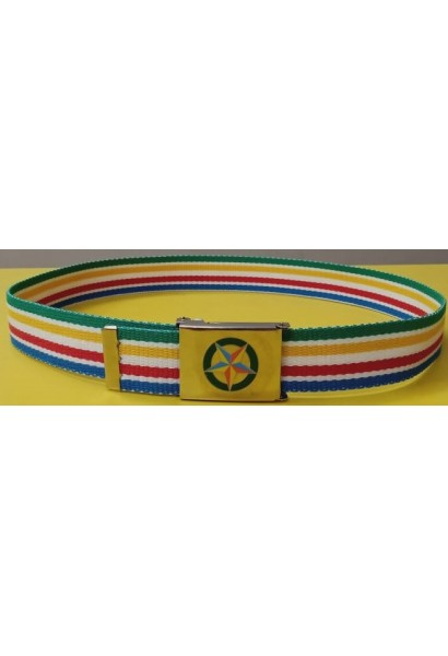 CWS Belt - Multicolor